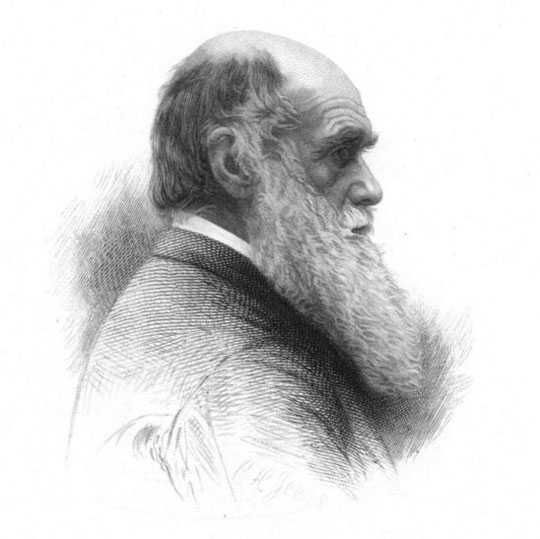 Charles Darwin gets 4,000 write-in votes in Athens against Paul Broun