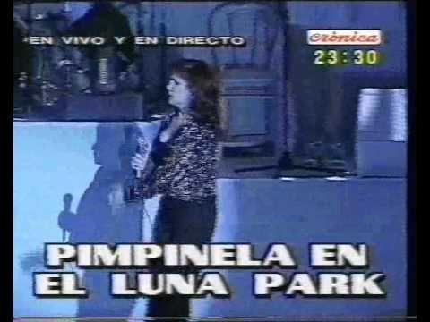 Pimpinela @Luna Park | 20 | Una estúpida más - YouTube