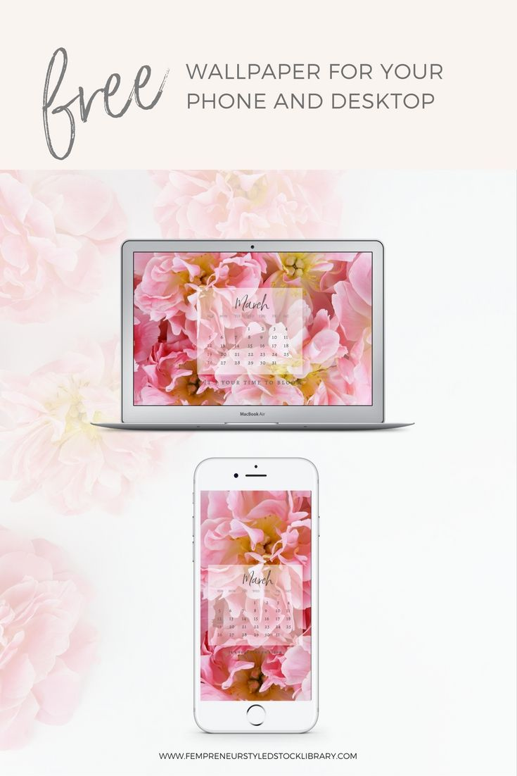 Free Tech Wallpaper for March by Fempreneur Styled Stock.