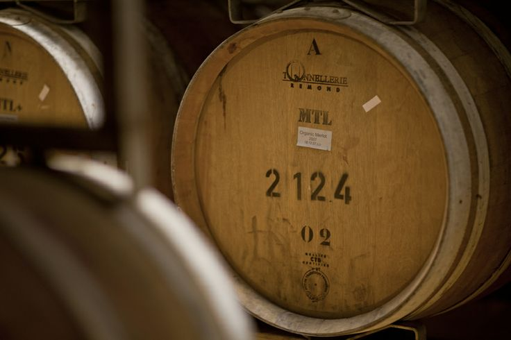 Building on the ancient Mediterranean viticulture legacy, Amphorae uses selected grapes hand-harvested from high altitude, cool temperatures vineyards to create unique wines, enriched by its winemakers' personal touch, inspiration and skills.