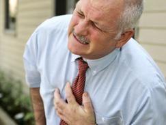 Des greffes cellulaires pour traiter les infarctus