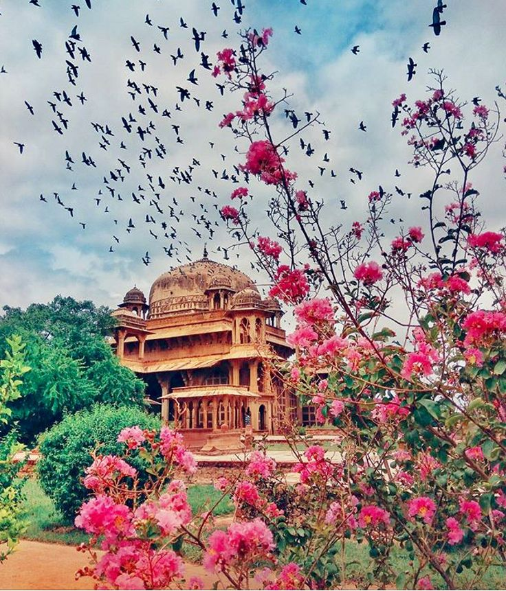 Lodhi gardens , New Delhi.