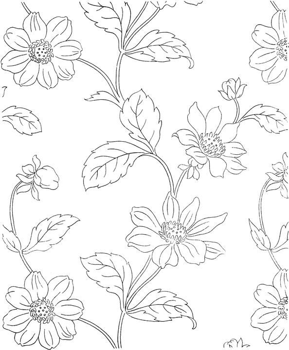371 best printable patterns images on Pinterest Embroidery - copy free coloring pages of hibiscus flowers