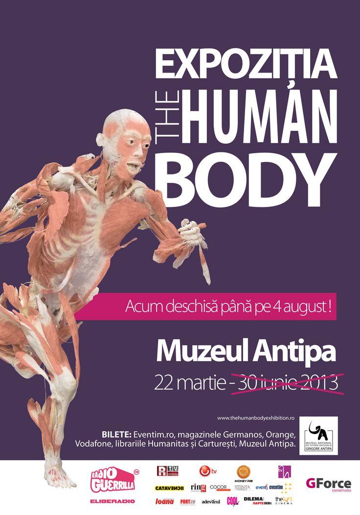 "EXPOZIȚIA ""THE HUMAN BODY"" - Muzeul Național de Istorie Naturală Grigore Antipa"