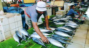 Indonesian Culinary Tourism: Sulawesi Seafood Market #indonesia #sulawesi #tourism #travel