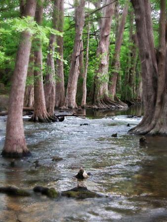 Cibolo Creek...Texas Hill Country