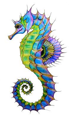 Seahorse Art - ClipArt Best