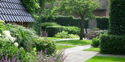 Tuin met een oude fruitboom. Een kavel bij een grote villa met vele hoeken en in elkaar overlopende stukken, door de ...