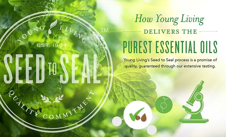 141 Best Images About Essential Oils On Pinterest