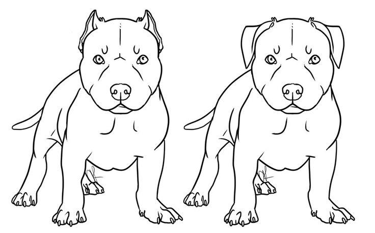 free pitbull drawings | free_pit_bull_pup_lineart_by_canidaeking-d4w7koc.jpg
