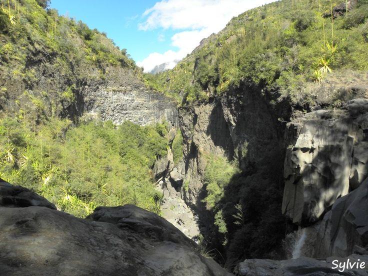 Près de la cascade du Bras Rouge / Ile de la Réunion