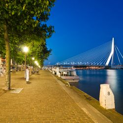 Willemskade Rotterdam