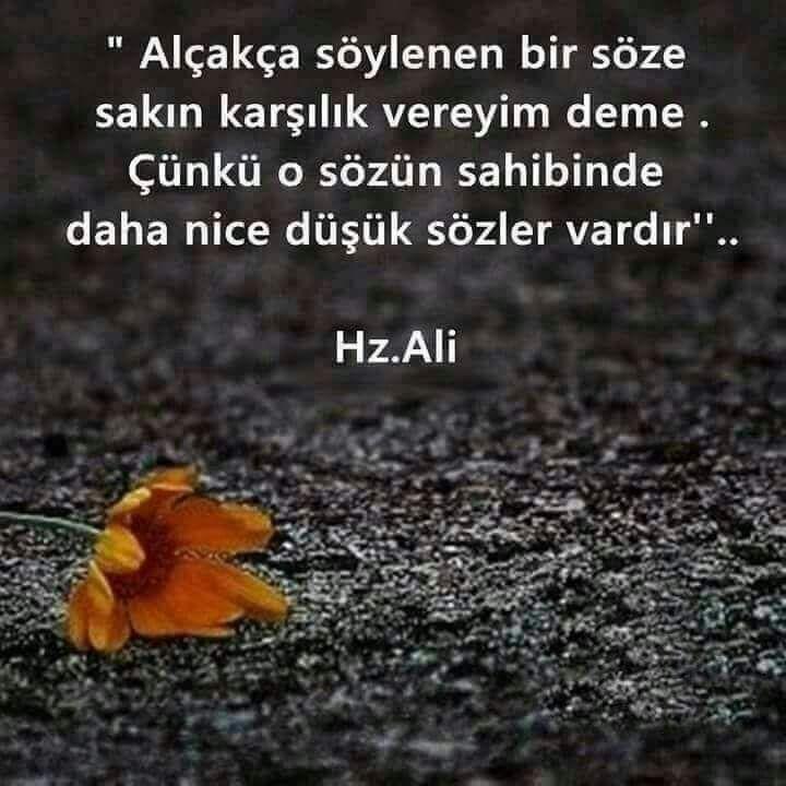 Hz Ali'nin Resimli Sözleri 2017 – Çok İyi Abi