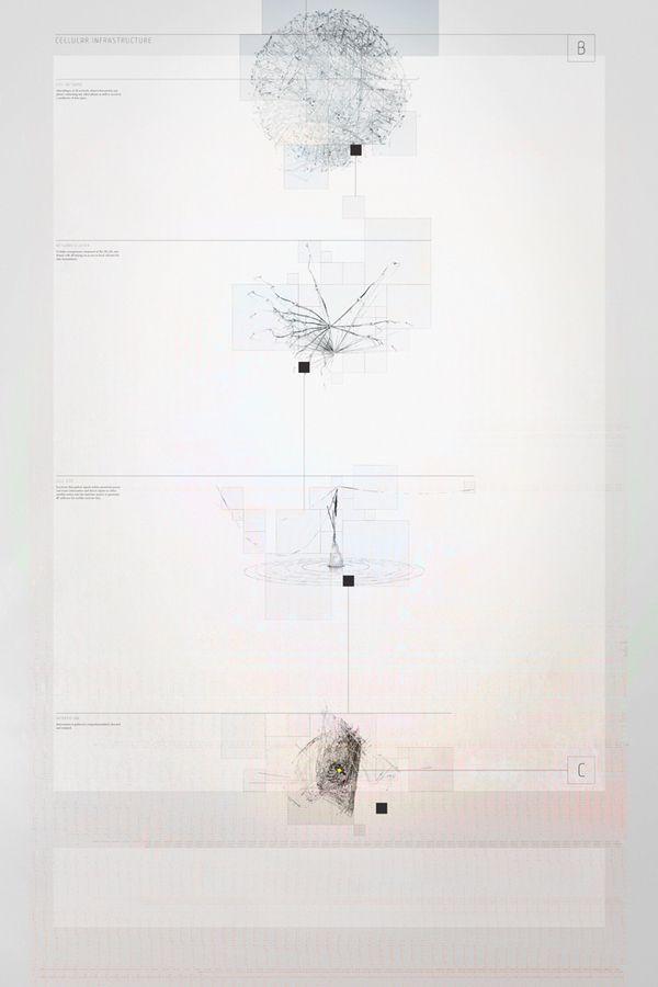 Network by Michael Rigley, via Behance