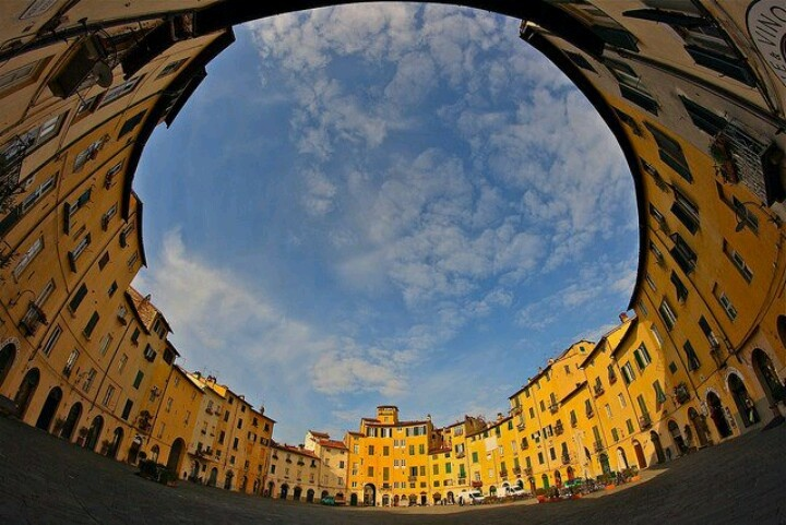 Lucca, piazza dell'Anfiteatro, province of Lucca, region of Tuscany , Italy.