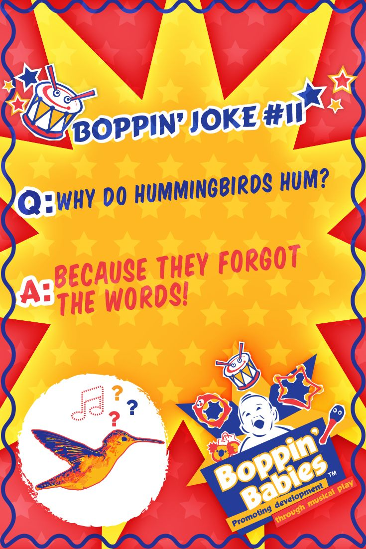 BOPPIN' JOKE 11 - Q: Why do hummingbirds hum? A: Because they forgot the words! #FridayFunny