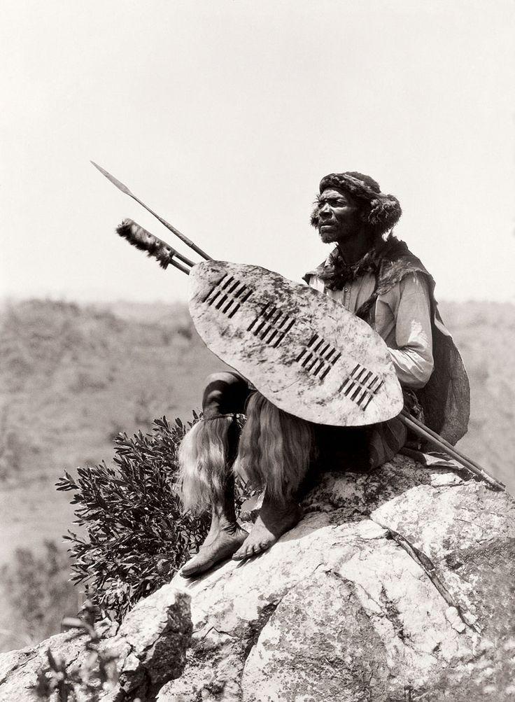tsonga warrior