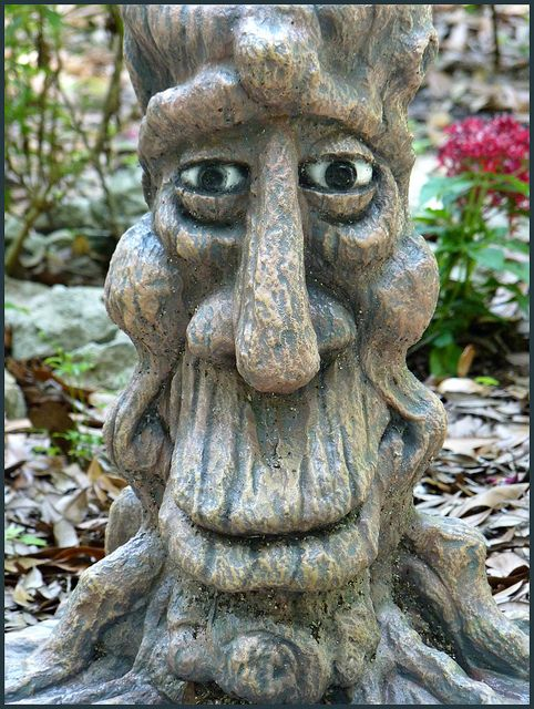 Cool Looking Tree Sculpture - Sugar Mill Gardens, Florida ...