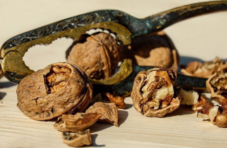 ořechy vlašské_1