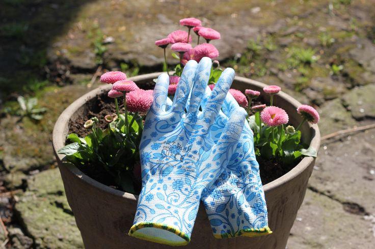 rękawice, nóweczki, jeszcze czyściutkie