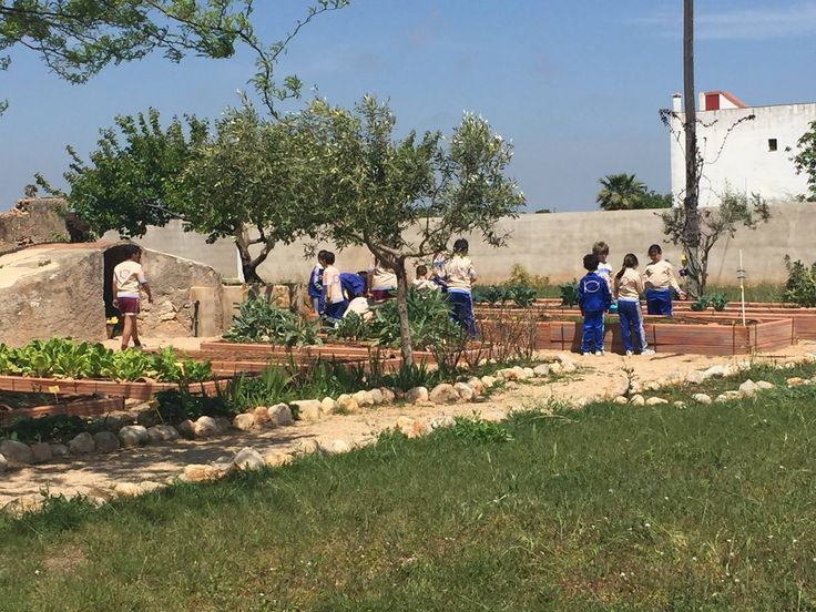 Más actividades del #EasterCampISP: Visitas al huerto para recoger verdura y fruta ¡¡Superdivertidas!! #huertoecológicoISP #CampusPascuaISP