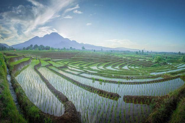 indonesia, landscape, aerial, nature, travel, beautiful, water, summer, tropical…