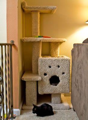 Diy cat tree house plans