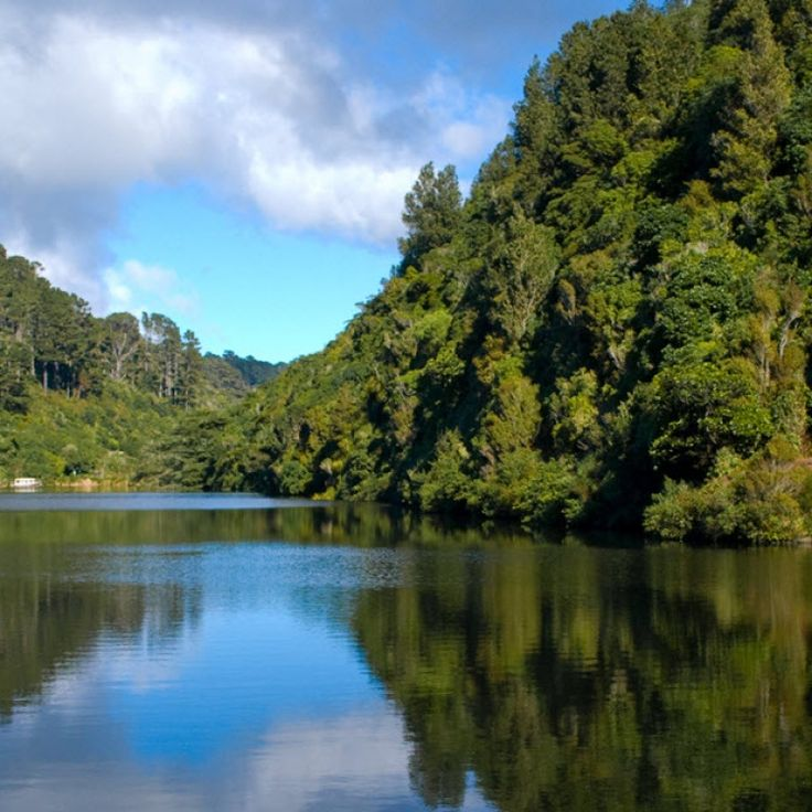Zealandia wildlife reserve