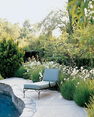 pool garden inspiration - lavender, roses  santa barbara home via martha stewart