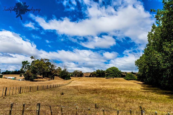 Birdwoods Hastings Havelock North New Zealand Hawkes Bay