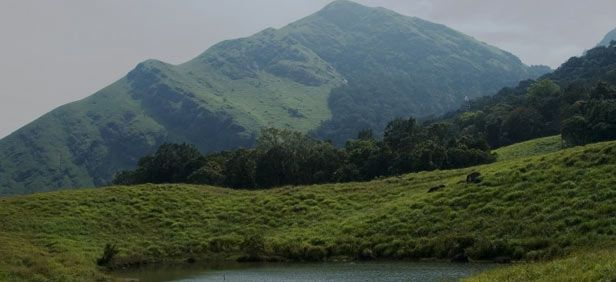 Trekking in Nilgiris - Nilgiris Trekking Circuits - Trekking in India