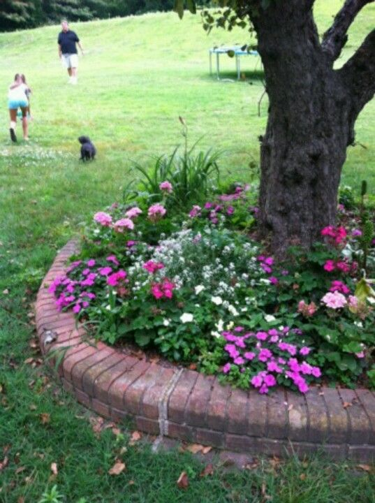 flower bed under tree created for our outdoor wedding - Flower Garden Ideas For Under A Tree