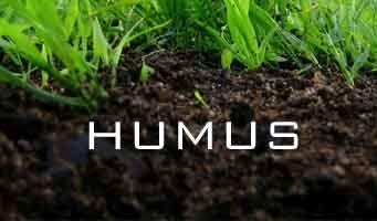 humus - soft dark soil containing decomposed organic matter, poor bearing capacity.