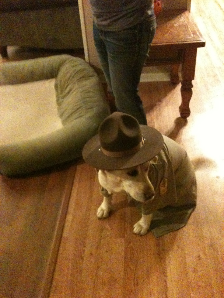 Sexy park ranger costume