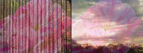 """'Bänderbild """"Stoffdesign mit Rosen bemalt""""' von Rudolf Büttner bei artflakes.com als Poster oder Kunstdruck $18.71"""