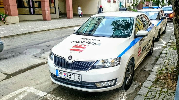 Skoda Rapid City Police car