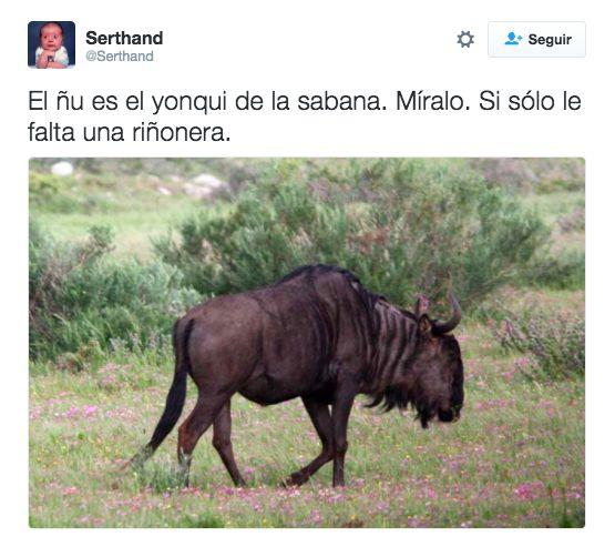 Los 50 tuits españoles más graciosos de 2016