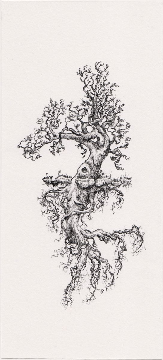 Desperately want a tree tattoo on my side. Love this for its mirrored image concept, roots and branches to look the same with a curved tree to complement my body lines.