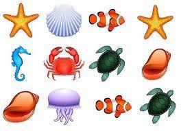"""Résultat de recherche d'images pour """"coloriage fond marin ..."""