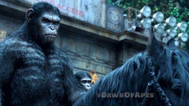 Apes Revolution - Il pianeta delle scimmie: 3 cortometraggi ci raccontano dieci anni di virus Simian