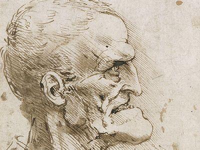 Contour Line Drawing Leonardo Da Vinci : Best linear shading images drawings of