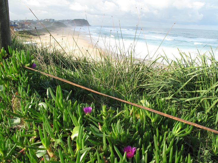Merewether Beach. (Photo by me using Canon PowerShot G10)