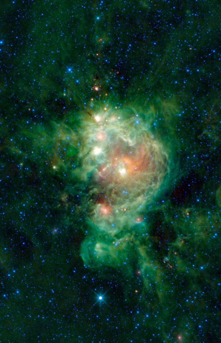 The Monkey Nebula, NGC2174 is a cloud of gas and dust that surrounds the star cluster NGC2175. The colors in this image may look like brush strokes of paint but actually represent specific wavelengths of infrared light. Particles of interstellar dust are warmed by the star cluster in the center of the nebula, which WISE (NASA's Wide-field Infrared Survey Explorer) represents by the colors green and red. The blue and cyan stars scattered throughout the image are hot compared to the dust.