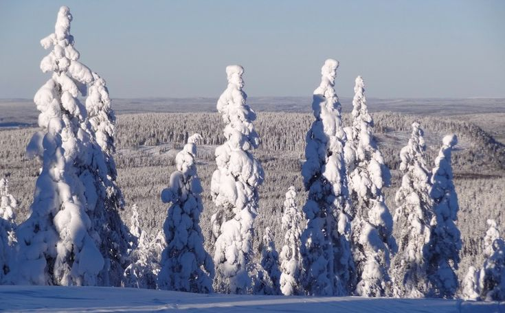 View from the top of Ritavalkea Ski Resort in Pello in Lapland