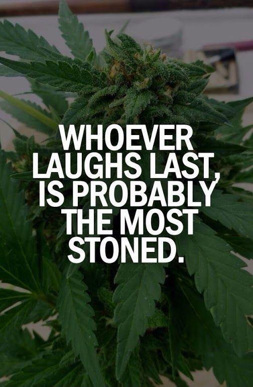Whoever laughs last, is probably the most stoned From RedEyesOnline.net