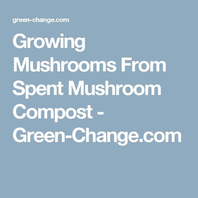 Growing Mushrooms From Spent Mushroom Compost - Green-Change.com