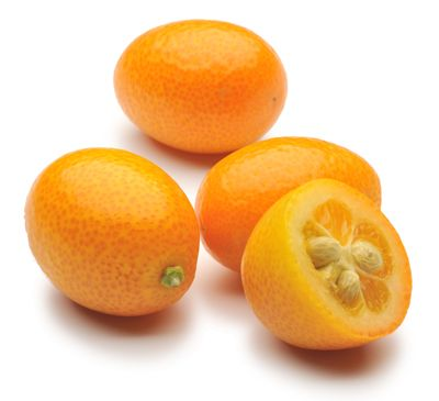 Candied Kumquats and Kumquat Marmalade