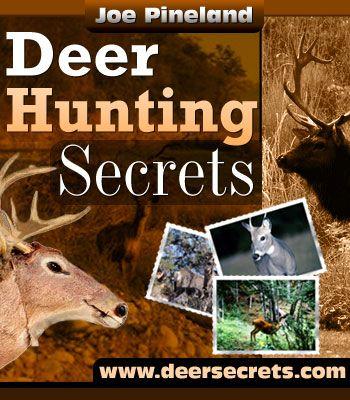 Deer Hunting Secrets, Whitetail Deer Hunting Tactics  Click Here!