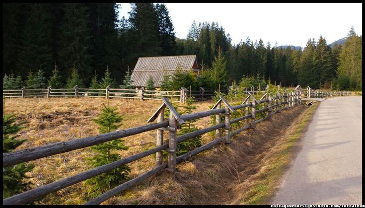 na tatrzańskim szlaku do Doliny Chochołowskiej.. #tatry #chochołowska #góry #Poland #mountains #szlak