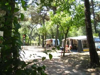 Piomboni Camping Village - Emilia Romagna. Il Piomboni Camping Village è ideale per una vacanza rilassante. Il campeggio e villaggio è a due passi dal mare, circondato dalla pineta, a soli 8 minuti dalla città di Ravenna e a 5 minuti da Mirabilandia. La spiaggia di sabbia, ideale per i bambini, dispone di campi da beach volley e servizio ombrellone.